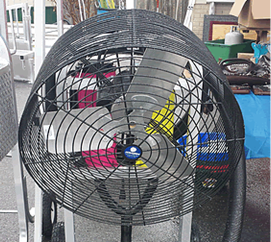 Picture of Fan